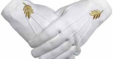 gloves 987tdfghjkl
