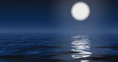 moonlight 65rtyghj