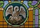 O cavaleiro pelicano