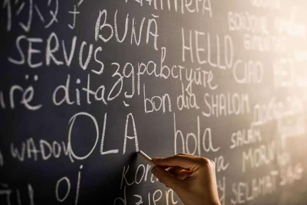 language 6rtedfgh