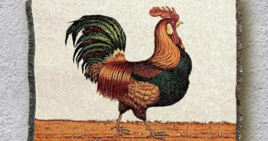 rooster ytre345rte4