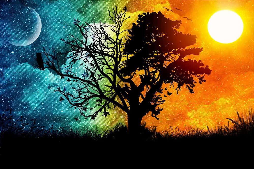 sun moon bhgf5trfg